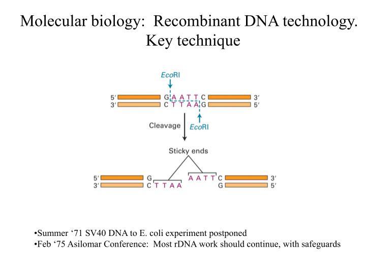 Molecular biology:  Recombinant DNA technology.