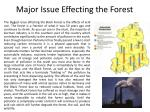 major issue effecting the forest