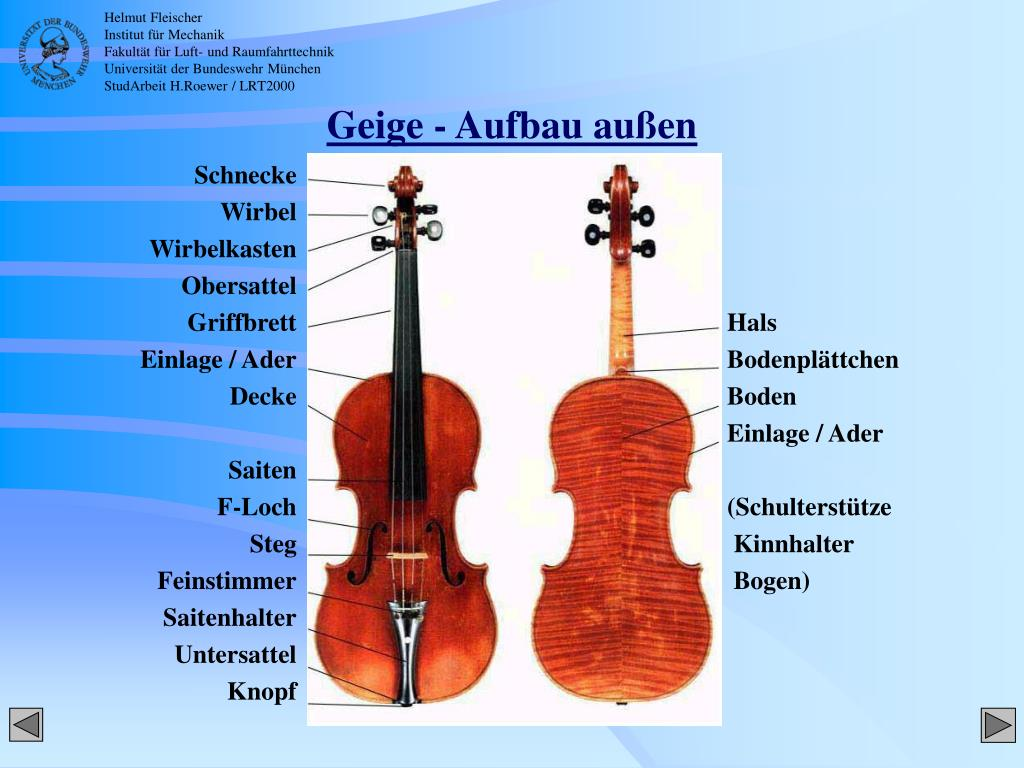 Aufbau Der Geige