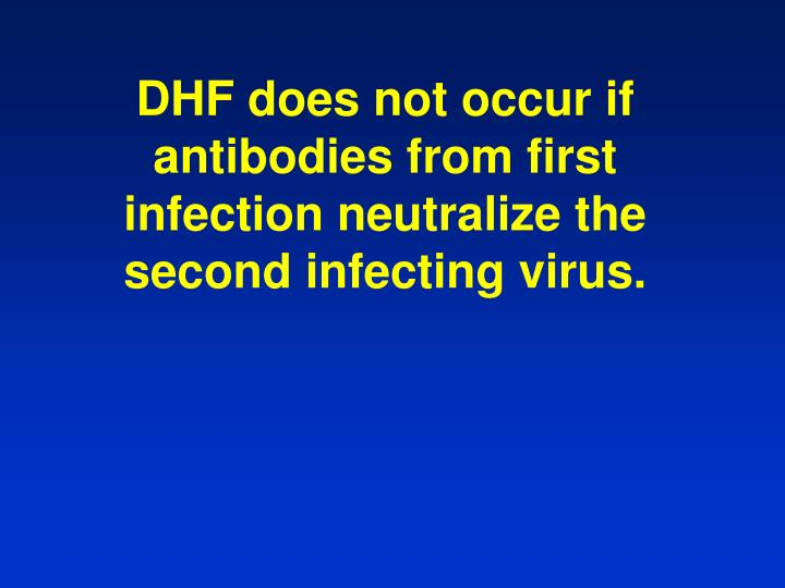 DHF does not occur if antibodies from first infection neutralize the second infecting virus.