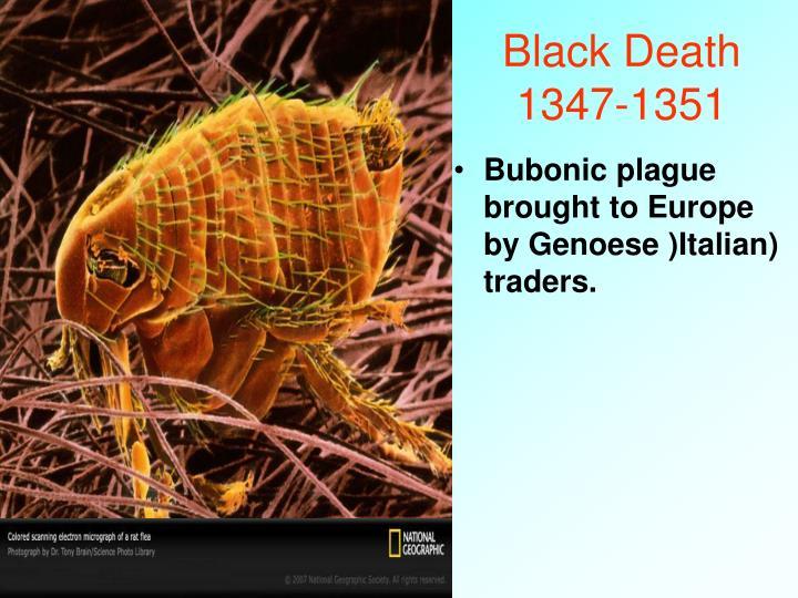 Black Death 1347-1351
