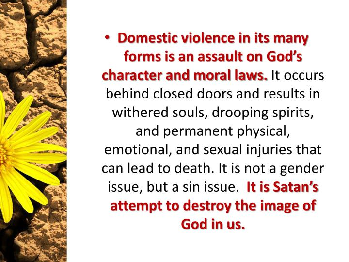 Domestic violence in its many forms is an assault on God's character and moral laws.