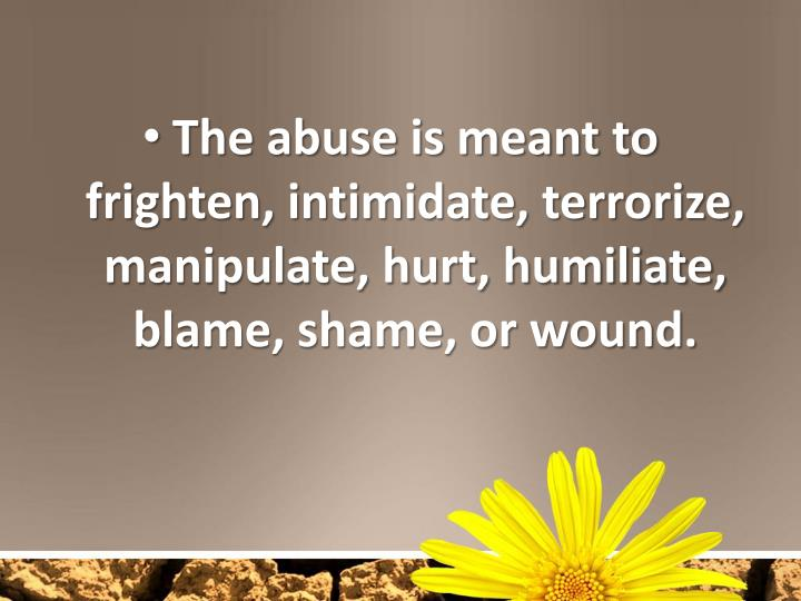 The abuse is meant to frighten, intimidate, terrorize, manipulate, hurt, humiliate, blame, shame, or wound.
