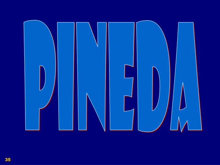 PINEDA
