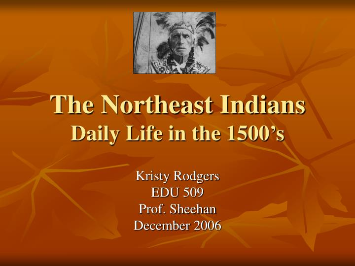 the northeast indians daily life in the 1500 s n.