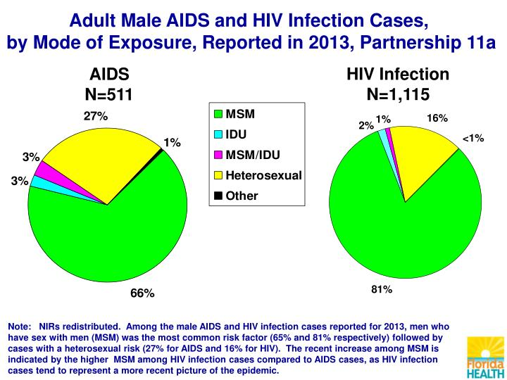 Adult Male AIDS and HIV Infection Cases,