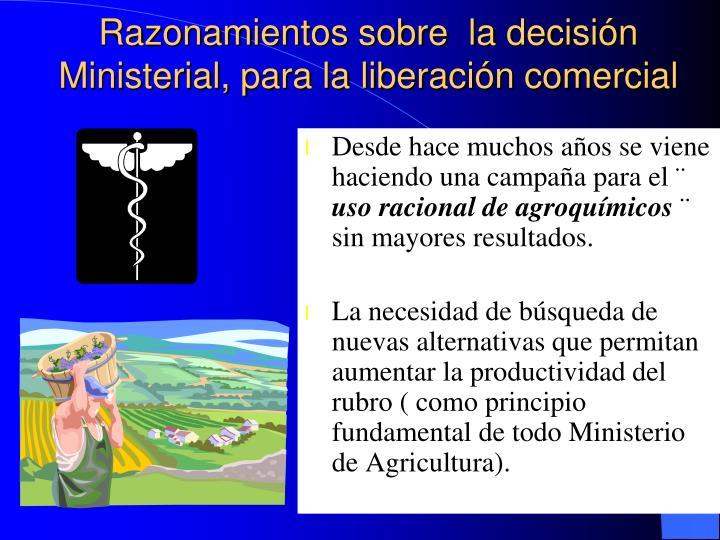 Razonamientos sobre  la decisión Ministerial, para la liberación comercial