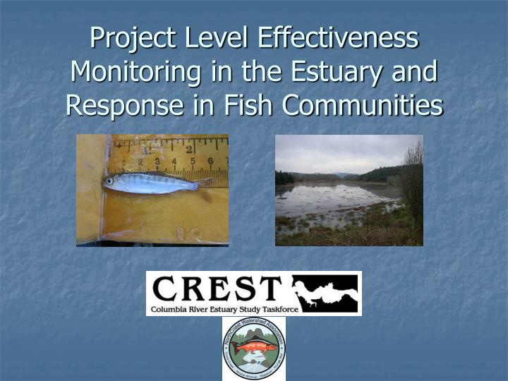 project level effectiveness monitoring in the estuary and response in fish communities n.