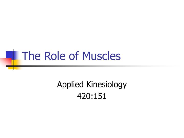 the role of muscles n.