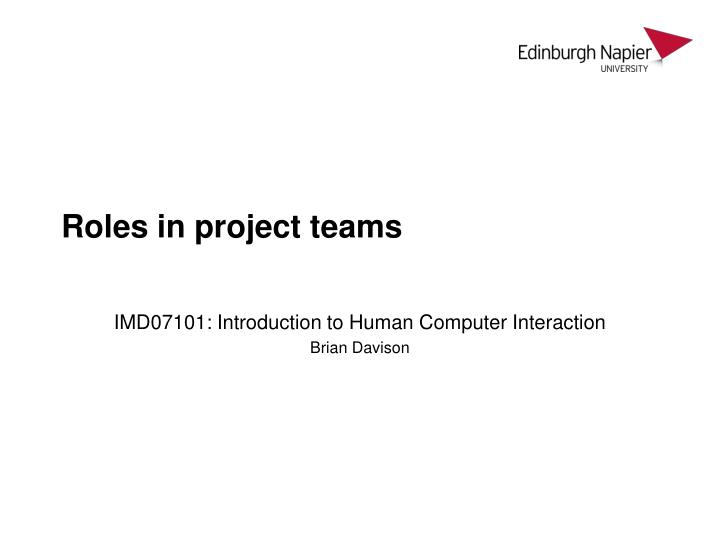 roles in project teams n.