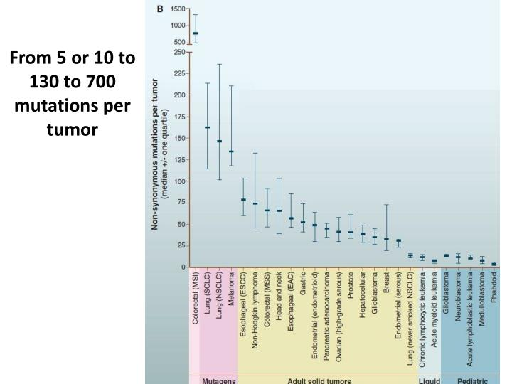 From 5 or 10 to 130 to 700 mutations per tumor
