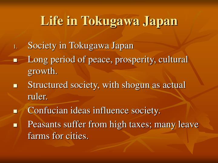Life in Tokugawa Japan