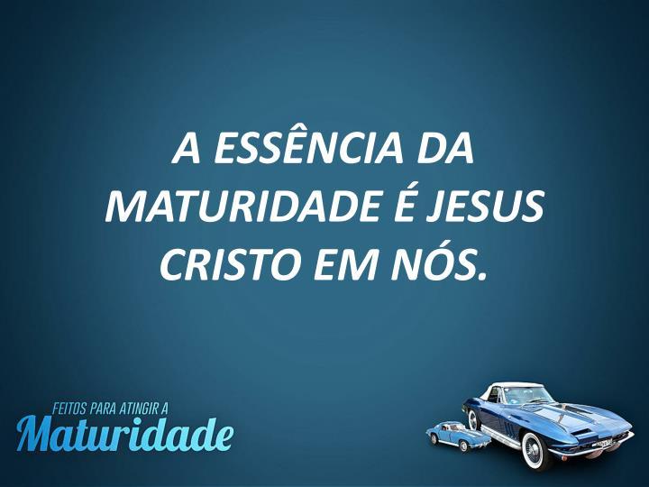 A ESSÊNCIA DA MATURIDADE É JESUS CRISTO EM NÓS.
