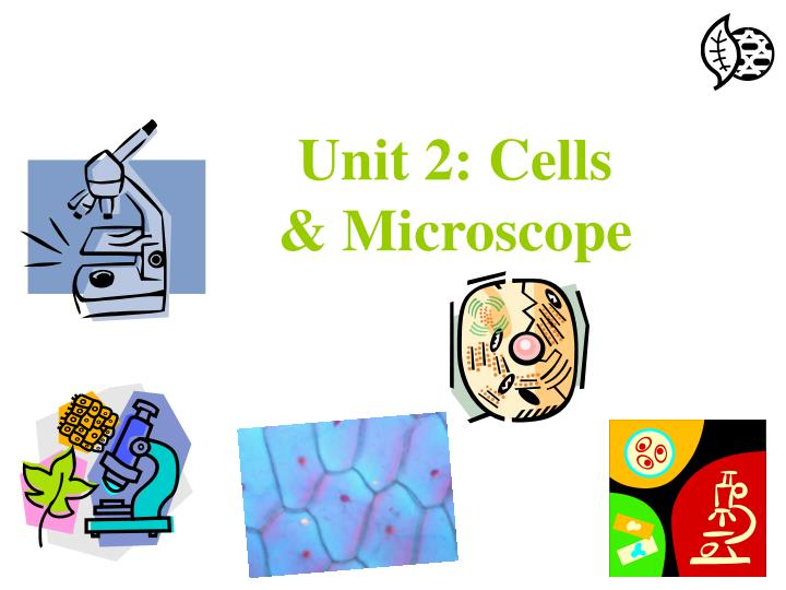 unit 2 cells microscope n.