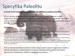 specyfika paleolitu