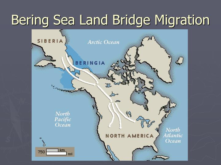 Bering Sea Land Bridge Migration