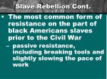slave rebellion cont