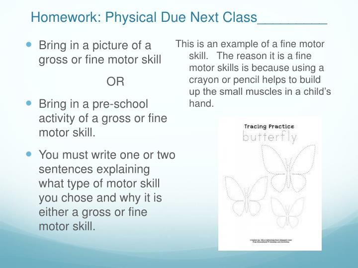 Ppt Physical Development Powerpoint Presentation Id5836999