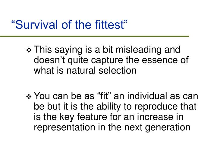 """""""Survival of the fittest"""""""