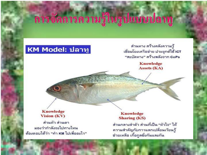 การจัดการความรู้ในรูปแบบปลาทู