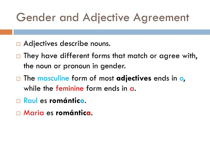 Gender and adjective agreement2