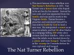 the nat turner rebellion