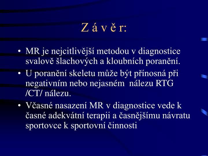 Z á v ě r: