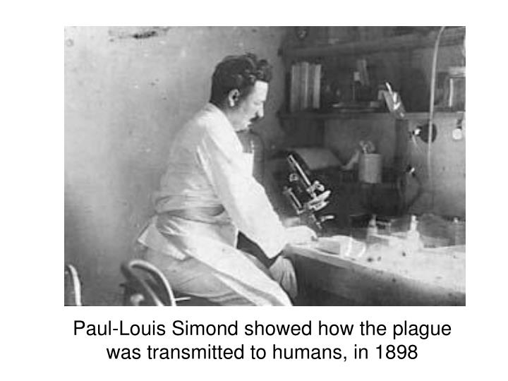 Paul-Louis Simond showed how the plague was transmitted to humans, in 1898
