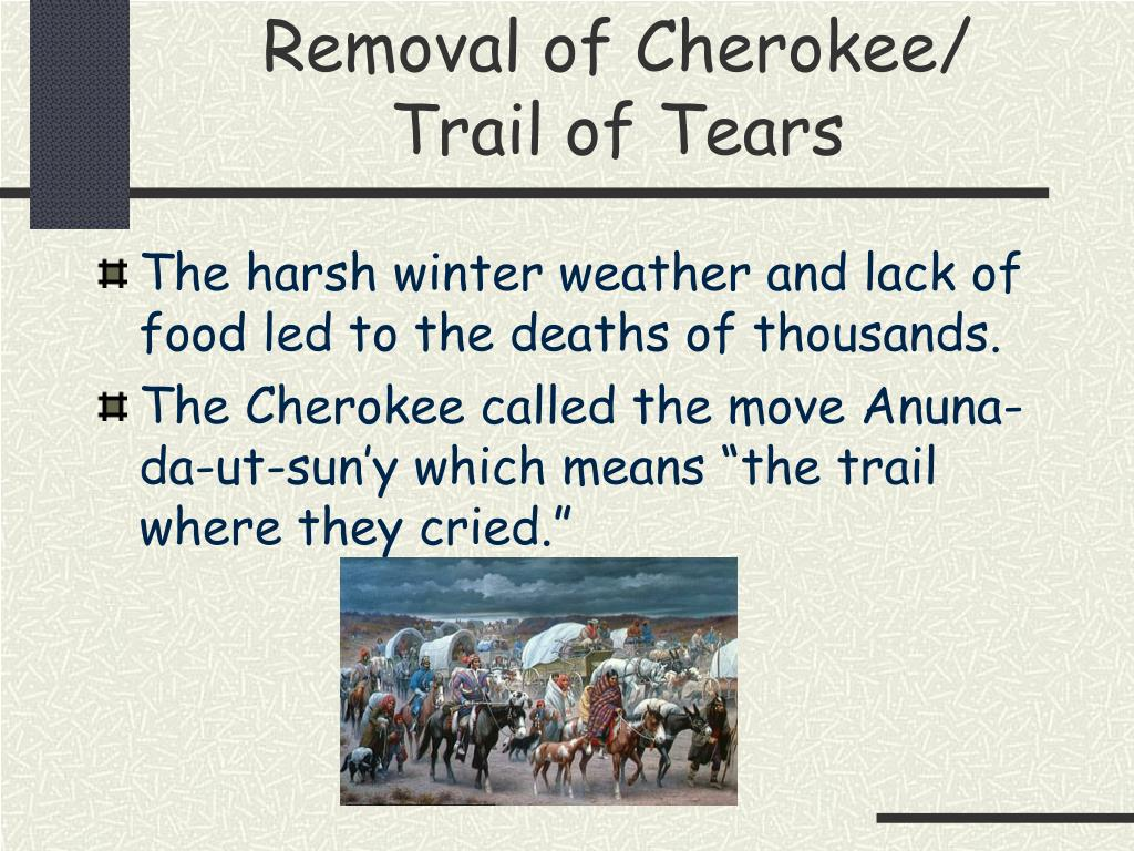 PPT - Indian Removal PowerPoint Presentation, free download