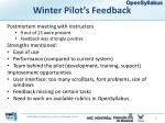 winter pilot s feedback