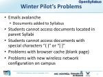 winter pilot s problems