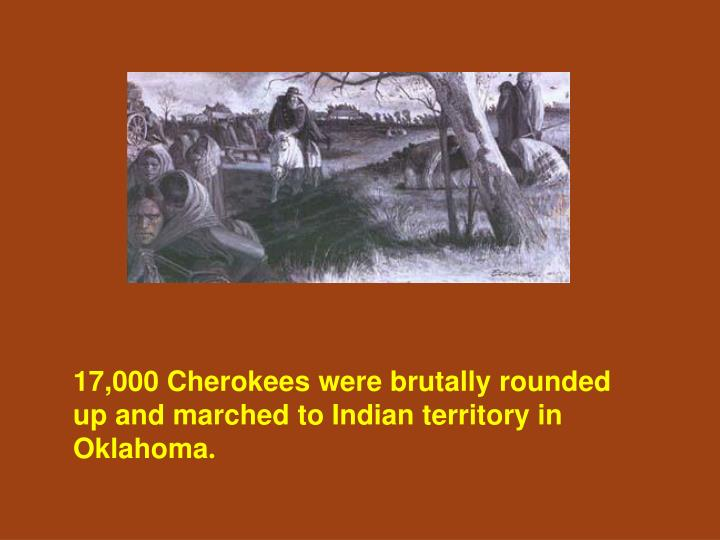 17,000 Cherokees were brutally rounded up and marched to Indian territory in Oklahoma