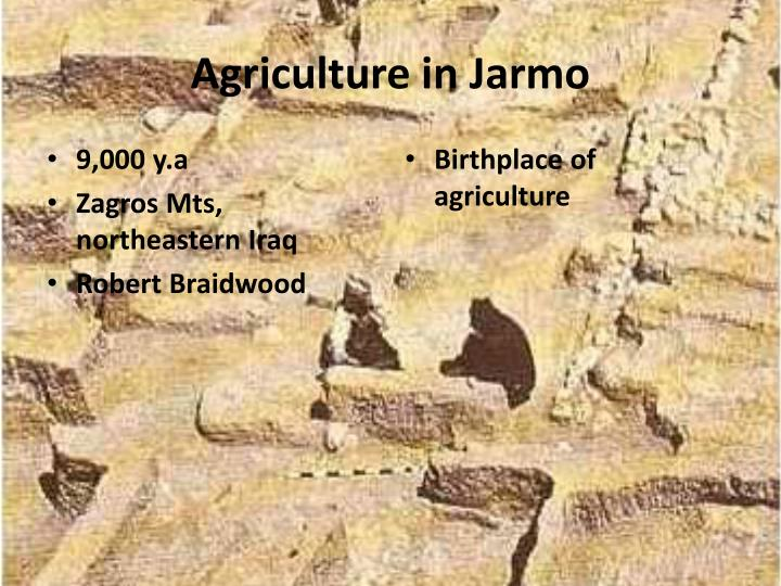 Agriculture in Jarmo