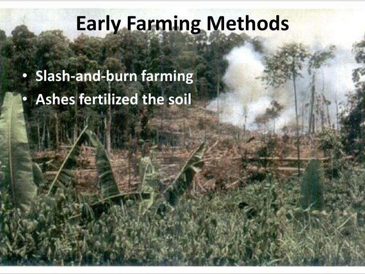 Early Farming Methods