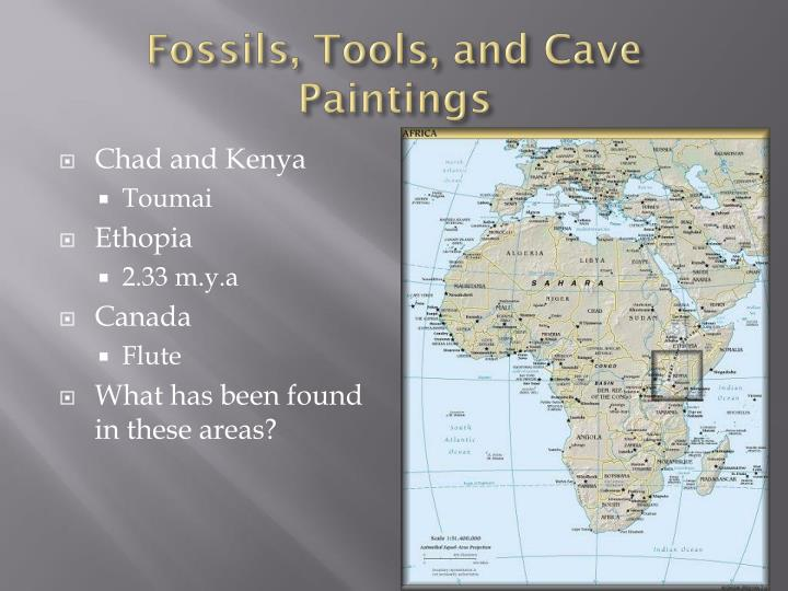 Fossils, Tools, and Cave Paintings