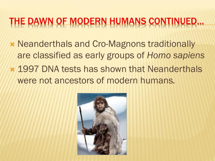 Neanderthals and Cro-Magnons traditionally are classified as early groups of