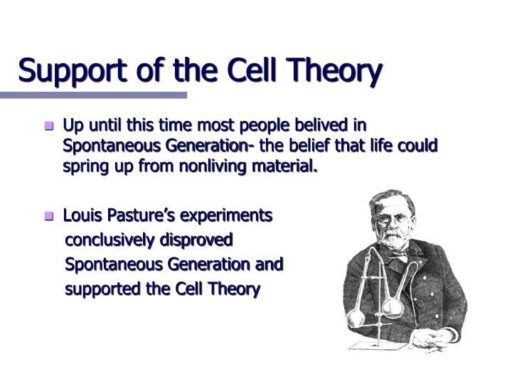 Support of the Cell Theory
