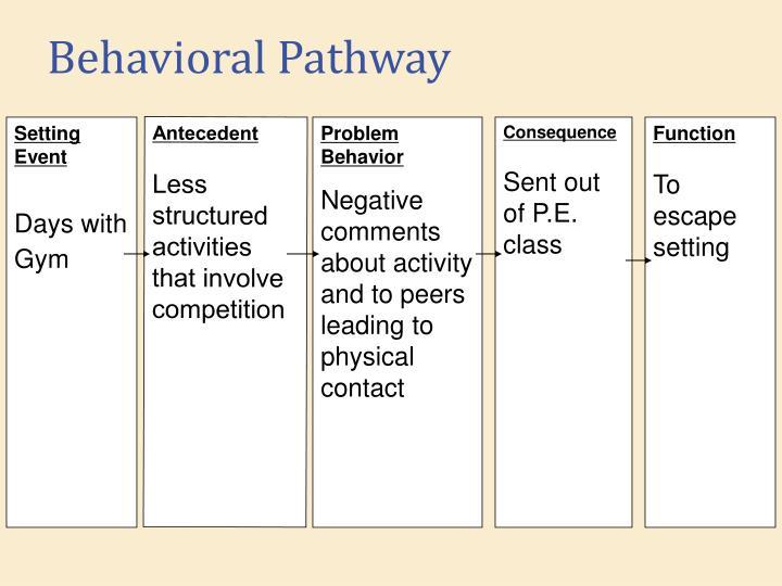 Behavioral Pathway