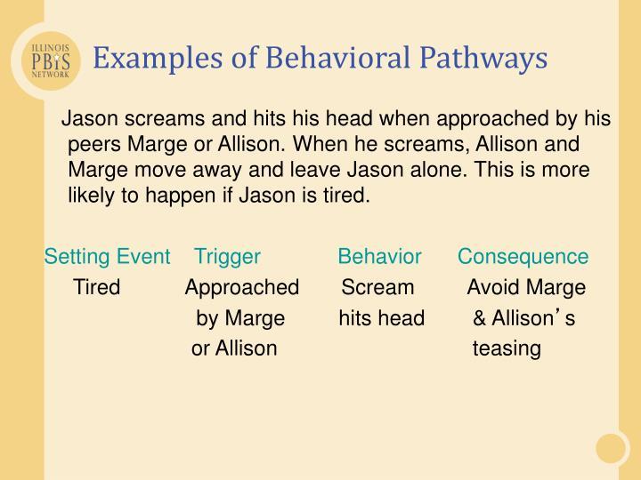 Examples of Behavioral Pathways