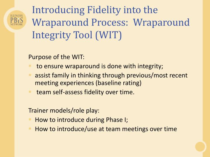 Introducing Fidelity into the Wraparound Process:  Wraparound Integrity Tool (WIT)