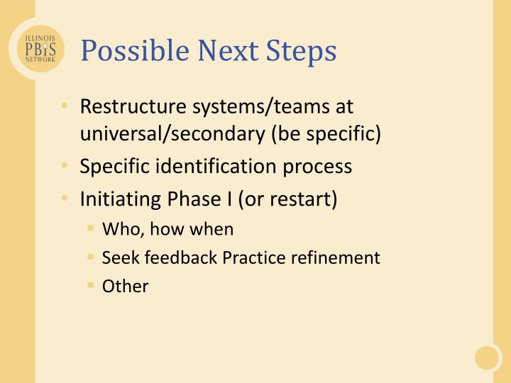 Possible Next Steps