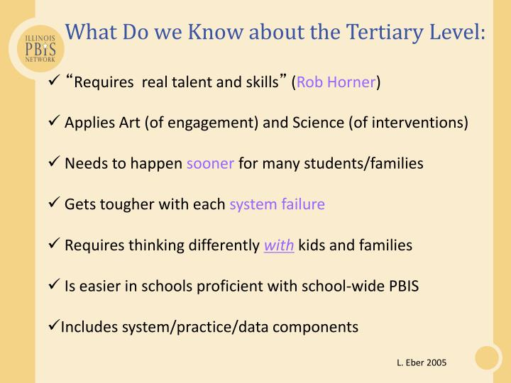 What Do we Know about the Tertiary Level: