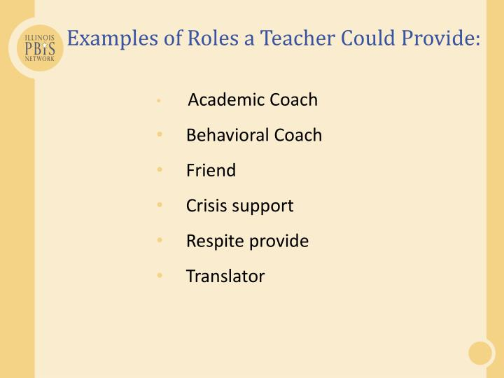 Examples of Roles a Teacher Could Provide: