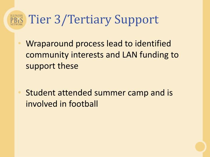 Tier 3/Tertiary Support