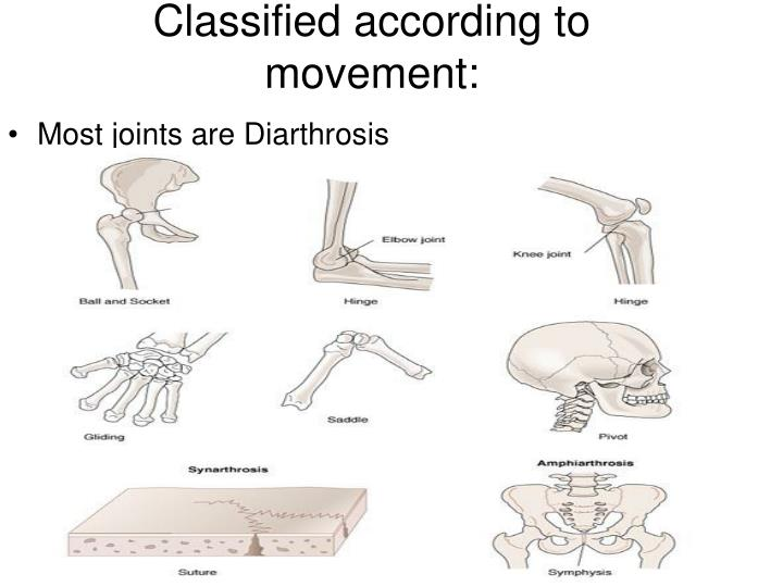 Classified according to movement: