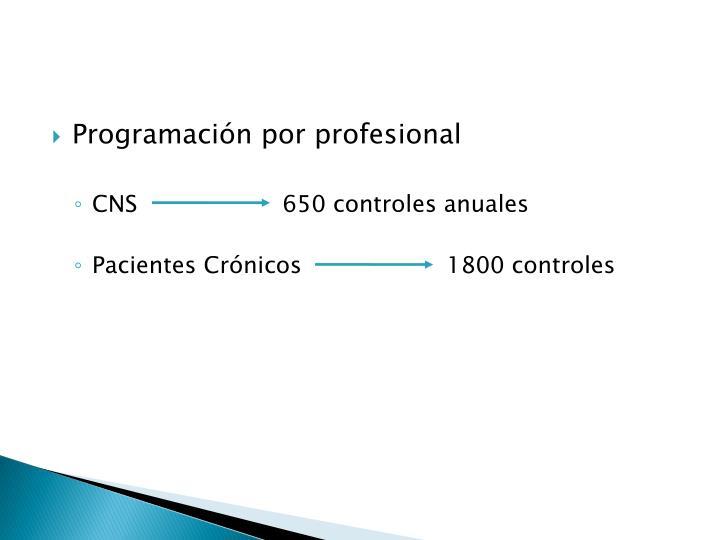 Programación por profesional