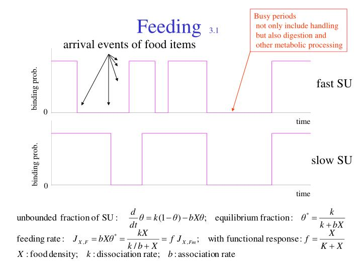 Feeding 3 11