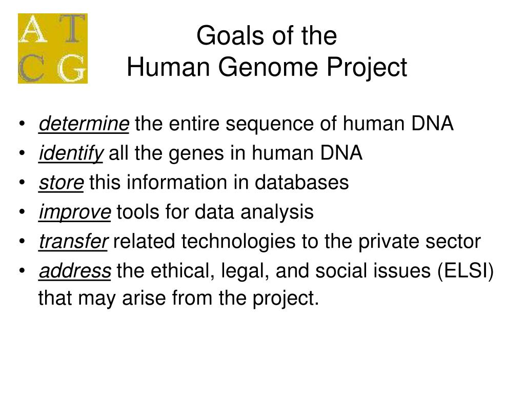 Human genome project aqa 2016 year 2 by slj22 teaching resources.