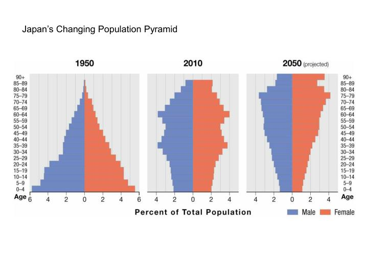Japan's Changing Population Pyramid