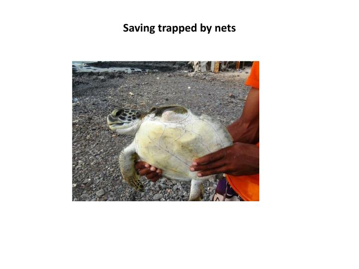 Saving trapped by nets